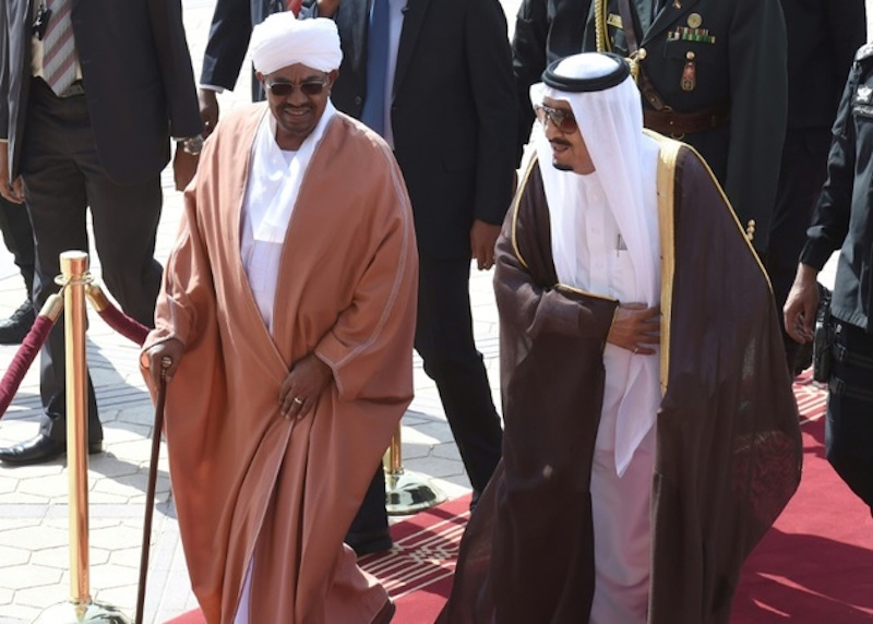 Sudan Passes Law for Saudi Arabia to Cultivate 100 Million Feddans