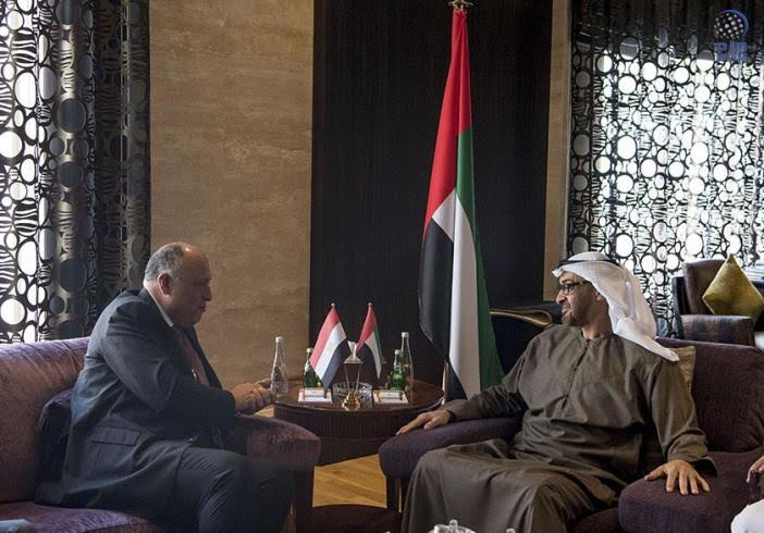 Egypt, UAE Agree to Fight Terrorism, Solve Crisis in Syria and Libya