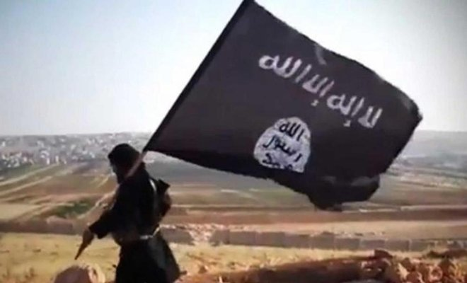 Sinai Tribes Rise against ISIS