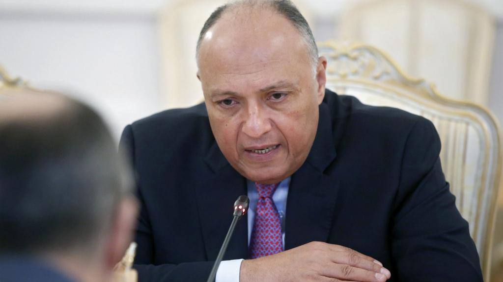 Shoukry Stresses Need for Comprehensive Solution to Save Yemen
