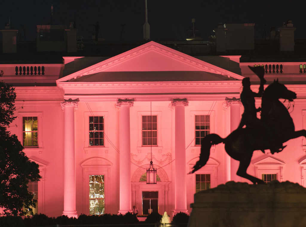 The White House is lit by pink lights in honor of Breast Cancer Awareness Month.